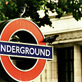 Underground by Rasma Bertz