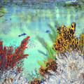Underwater #2 by Jennifer Creech