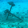 Underwater Anchor by Nicole I Hamilton