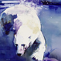 Underwater Bear by Mark Adlington