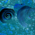 Underwater Eye by Laura Brightwood