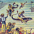 Underwater Race, 1900s French Postcard by Science Source