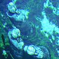 Underwater Statues by Kenneth Albin