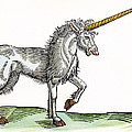 Unicorn, 1607 by Granger