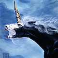 Unicorn Fury by Melissa A Benson
