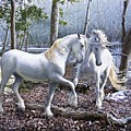 Unicorn Reunion by Barbara Hymer