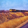 Union Pacific Coal Train by Anna Louise