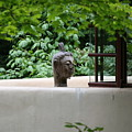 Unique View Fallingwater  by Chuck Kuhn