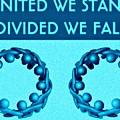 United by Meiers Daniel