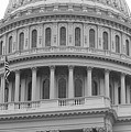 United States Capitol Building Bw by Frank Romeo