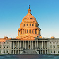 United States Capitol  by Larry Marshall