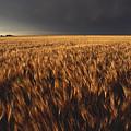 United States, Kansas, Summer Thunder by Keenpress