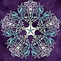 Unity Star by Derek Gedney