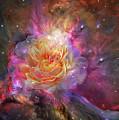 Universe Within A Rose by Carol Cavalaris
