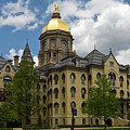 University Of Notre Dame Main Building 1879 by Sally Weigand