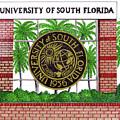 University Of South Florida by Frederic Kohli