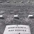 Unknown Bodies by Robbie Masso