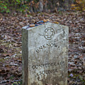 Unknown Confederate Soldier - Natchez Trace by Debra Martz