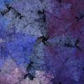 Untitled 11-29-09 by David Lane