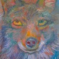 Coyote Chill Stage One by Kendall Kessler
