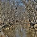 Up A Creek by Earl Telfair