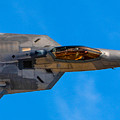 Up Close F-22 Raptor by Tommy Anderson