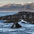 Up The Stikine by Richard Rivard