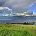 Upcountry Maui by DJ Florek