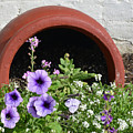 Upended Flower Pot Jekyll Island Historic District by Bruce Gourley