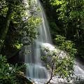 Upper Catawba Falls by Chris Berrier