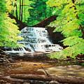 Upper Falls At Salt Springs by Mark Regni