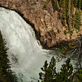 Upper Falls In Yellowstone National Park by Brenda Jacobs