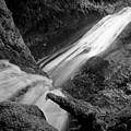 Upper Madison Creek Falls Three by Nicholas Miller