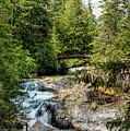Upper Qualicum Falls by R J Ruppenthal