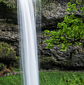 South Falls And Trail by Robert Potts