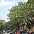 Uptown Ny Street by Vannetta Ferguson