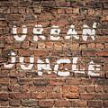 Urban Jungle by Mr Doomits