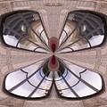 Urban Reflection by Tim Allen