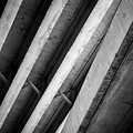 Urban Rib Cage - Number One by Kaleidoscopik Photography