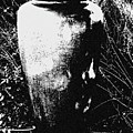 Urn by Iris Posner