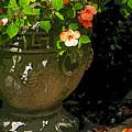 Urn Of Impatience by Deborah Johnson