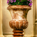 Urn With Purple Flowers by Jerry Fornarotto