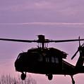 Us Army Blackhawk by Brenton Woodruff