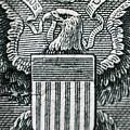 Us Dollar Eagle by Dan Radi