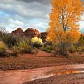 Utah Autumn by Gary Yost