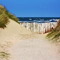 Utah Beach Normandy France by Susie Weaver