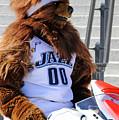 Utah Jazz Bear by Dennis Hammer