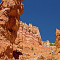 Utah Seventh Graders Climbing Switchbacks On Wall Street, Navajo Trail In Bryce National Park, Utah by Ruth Hager