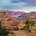 Utah's Little Grand Canyon Panoramic by TL Mair
