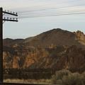 Utility Pole by Sara Stevenson